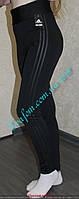 Лосины женские ластик, фото 1