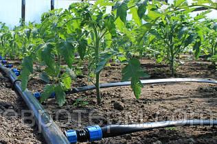 Как обустроить полив огорода