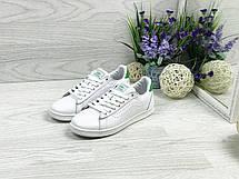 Кроссовки кеды женские Vans белые с зеленым, фото 2