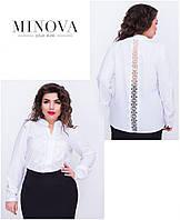 Блуза женская. Ткань супер софт. Размер 52, 54,56. В наличии 5 цветов
