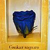 """Вечные розы Синий сапфир """"3 розы"""", фото 4"""