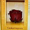 Вечные розы Багровый гранат, фото 4