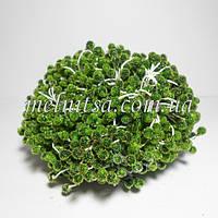 Тычинки в сахаре, большие, цвет зеленый