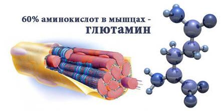 Аминокислота L-Глютамин Profiprot 100г, фото 2