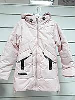 Курточка демисезонная для девочки 815
