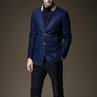 Мужское весенние пальто. Модель 61866, фото 1