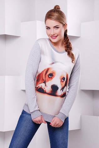 """Жіночий світшот """"Cotton"""" з принтом Собака 44, фото 2"""
