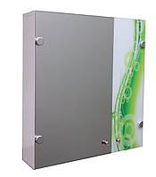 Навесной шкафчик в ванную комнату Zr - 710 (корпус покрашен)