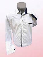 Мужская рубашка больших размеров 1003/34