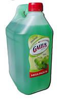 Жидке Мыло Gallus HandSeife (Яблуко) - 5 л.