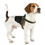 Шлея нейлон для собак AGILA FLUO 4 Ferplast (Ферпласт) с мягкой подкладкой и двойной микрорегулировкой, цвет в, фото 9