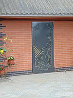 Двері Д-5, фото 1