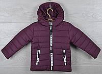 """Куртка детская демисезонная """"Moncler Tayes"""". 92-116 см (2-6 лет). Бордо. Оптом., фото 1"""