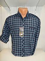 Рубашка мужская Senato  длинный-короткий рукав, клетка-полоска  002\ купить рубашку