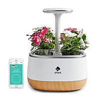 SPlant Smart Fresh Herb Сад Набор Интеллектуальный крытый росток Светодиодный Сад Четыре цветочный горшок с приложением Дистанционное