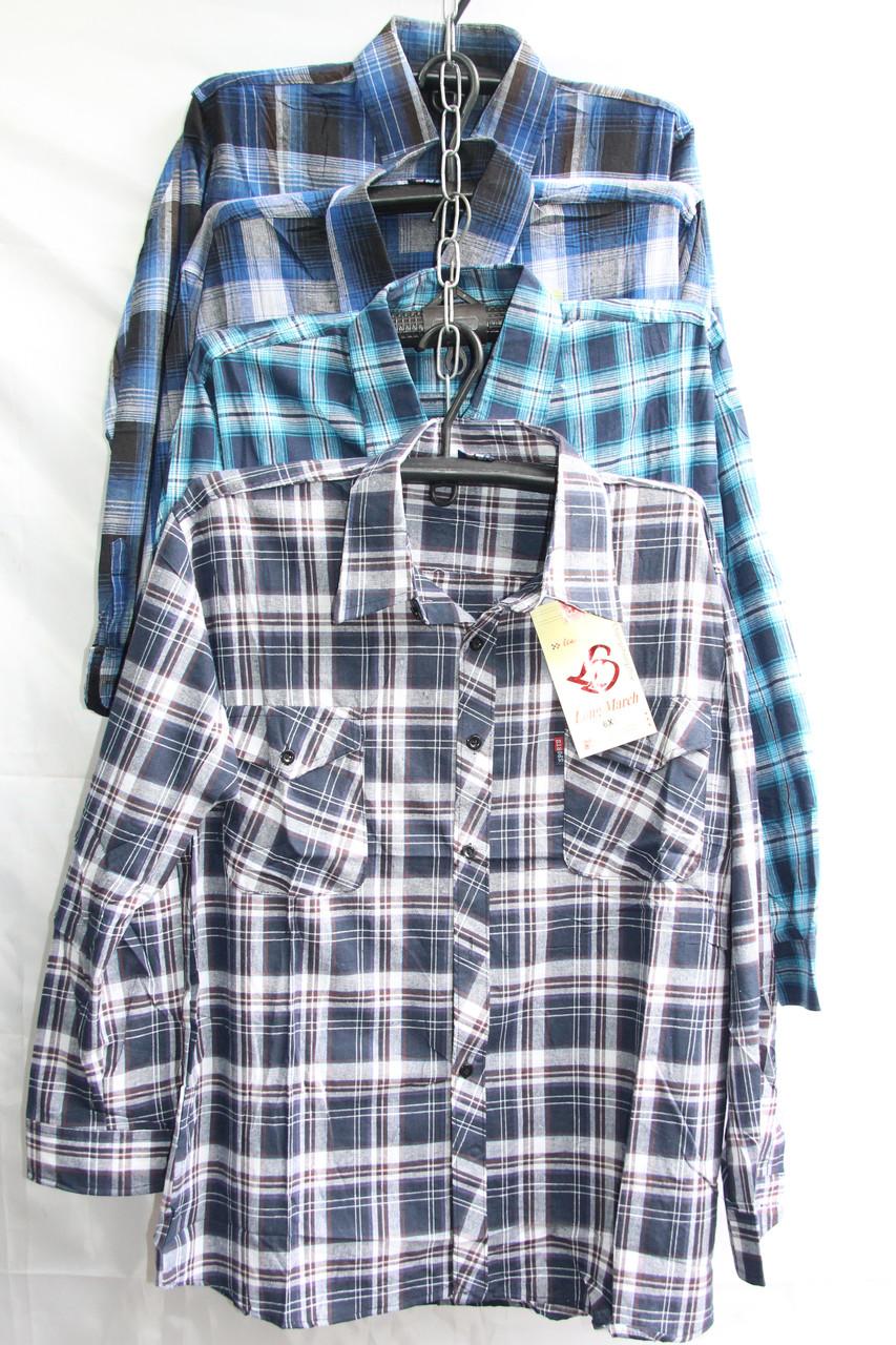 Мужская рубашка оптом со склада