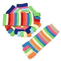 Новые 5 пар Lot Colorful Женское Девочки Цвет Полоски Пять Finger Toe Носки Чулочно-носочные изделия