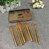 Набор кистей для макияжа в стильном железном пенале