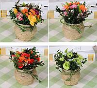 Цветок для выращивания конопли Розы Растение Горшечный костюм Свадебное Платье Украшение