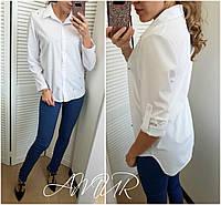 Рубашка женская большие размеры (цвета) СЕР1212, фото 1