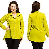 Рубашка женская большие размеры (цвета) АНД5064, фото 1