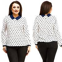 Блузка женская большие размеры (цвета) АНД5067, фото 1
