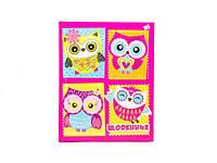Дневник школьный 7БЦ Owl YES 910919 Код:12037044