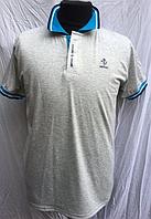 Футболка мужская  ( р-ры XL - 3XL )