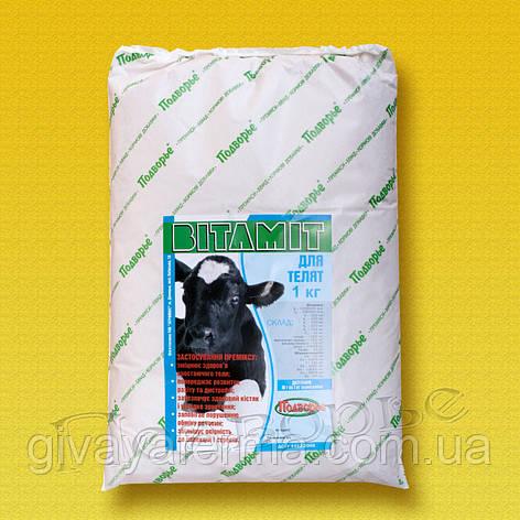 Премикс Витамит - теленок 1%, 25 кг, витаминная добавка к корму, фото 2
