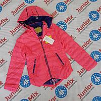 Куртка весенняя на девочку подростковая SPEED.A, фото 1