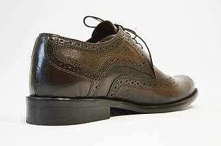 Туфли классические из натуральной кожи коричневые Calif, фото 3