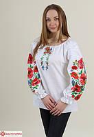 Праздничная женская вышиванка белого цвета с красными маками