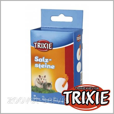 Соль для кролика c держателемTRIXIE, фото 2