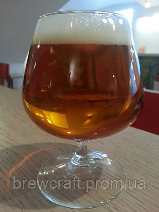 Набор для приготовления Бельгийское бисквитное пиво, фото 2