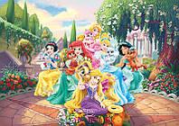 Фотообои  детские для девочки Дисней (флизелин, бумага, 368х254, 416х290) Принцессы в саду (2492CN)