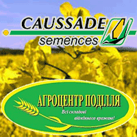 Семена рапса Коссад Семанс