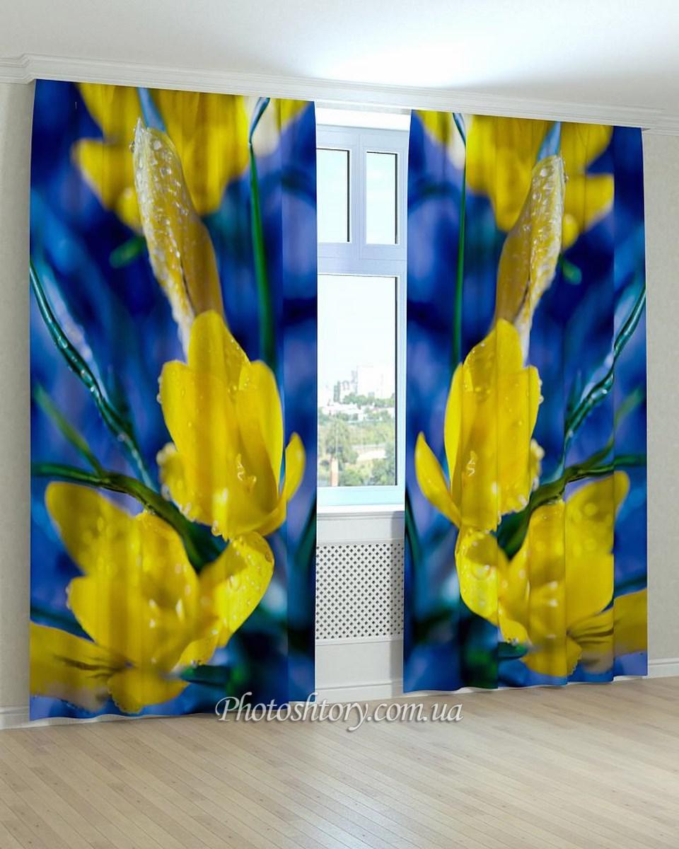Фотошторы цветы желто-синие
