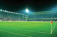 Фотообои бумажные на стену 368х254 см : Футбольный стадион (306P8CN), фото 1