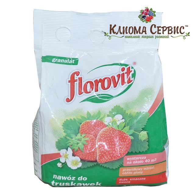 купить удобрение для клубники Флоровит, подкормка клубники, польское удобрение