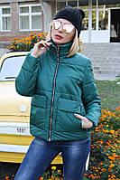 Куртка демисезонная №35, фото 1