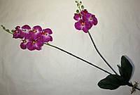 Искусственные цветы Орхидея фаленопсис с корнями (96 см)