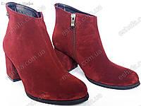 Женские ботильоны  на широком каблуке 6,5см из натуральной замши бордового цвета, фото 1