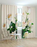Фотошторы цветы розы