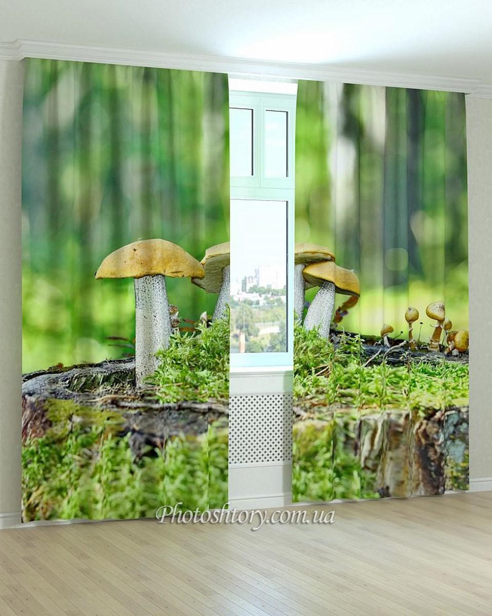 Фотошторы грибы для дома
