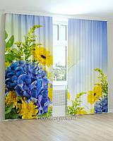 Фотошторы цветы хризантемы синие