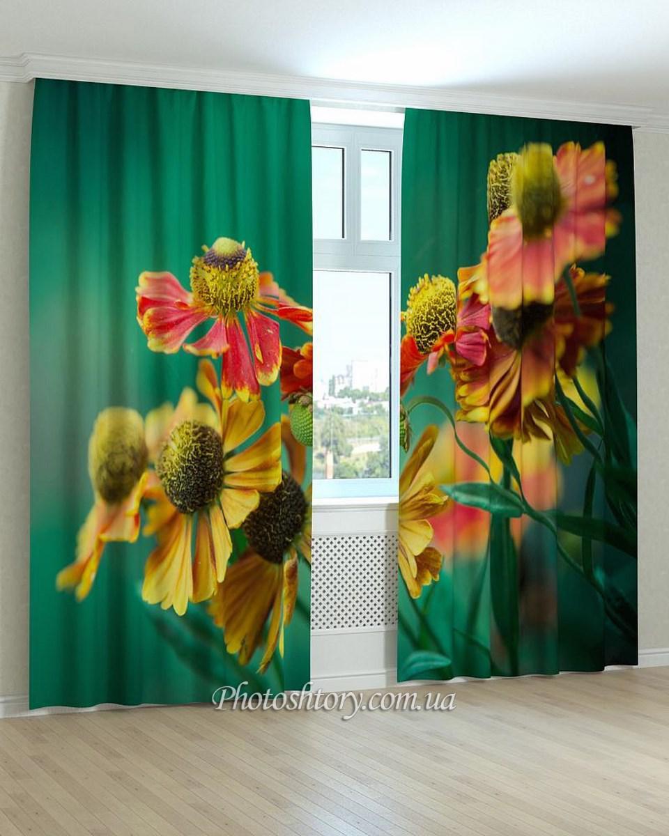 Фотошторы цветы красивый крупный план