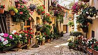 Фотообои 3D город (флизелин, бумага, 254х184, 312х219, 368х254, 416х254 ) Улица в цветах (1339P8CN)
