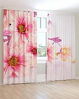 Фотошторы цветы маргаритки розовые