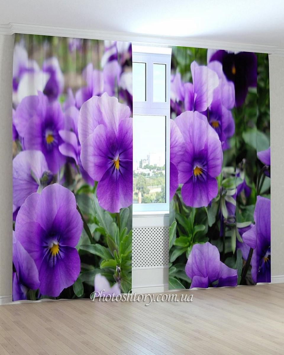 Фотошторы квіти віола синя