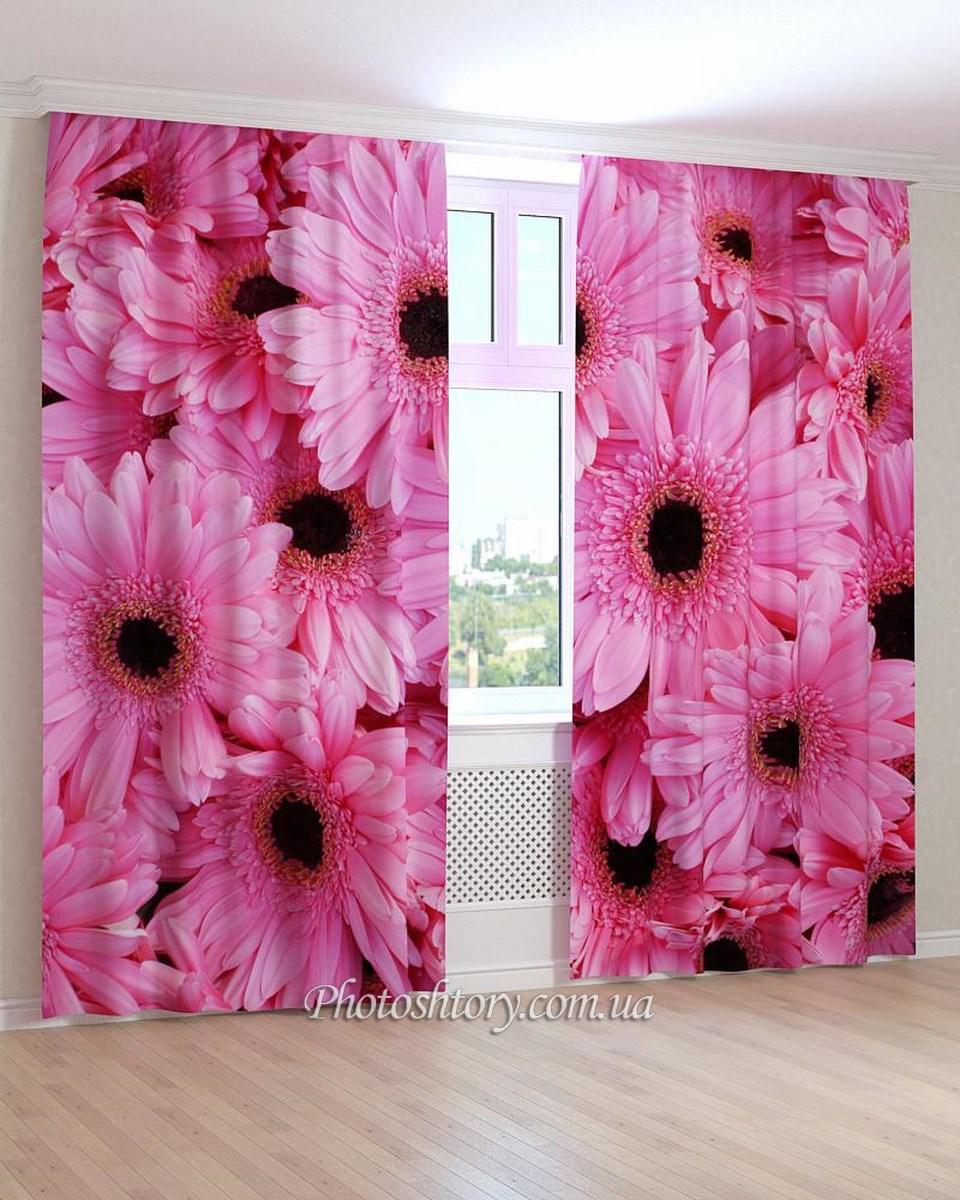 Фотошторы цветы розовые герберы